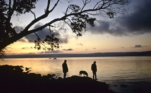 Two people and a dog along the shore at Seal Rock Campground in the morning light.