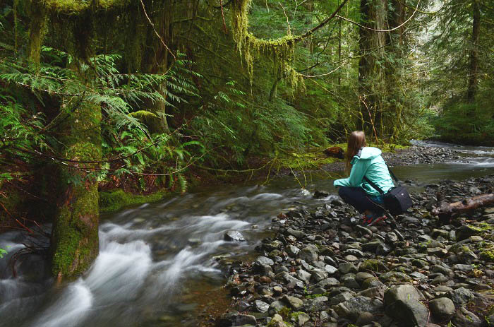 Hiker kneels at Jefferson Creek on Elk Lake Trail.jpg