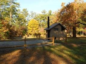 Francis Marion and Sumter National Forests - Sedalia Campground