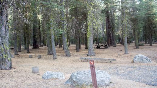 Clark Fork Campground