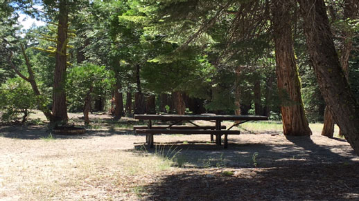 Fence Creek Campground
