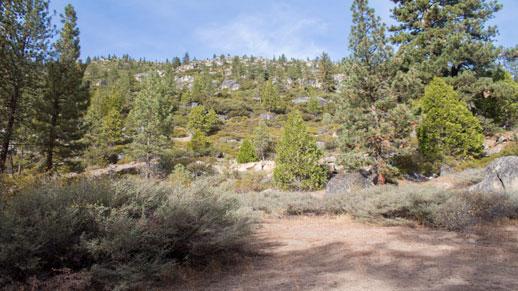 Pigeon Flat Trail