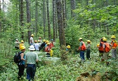 Forest Service and partners in the Skokmish watershed