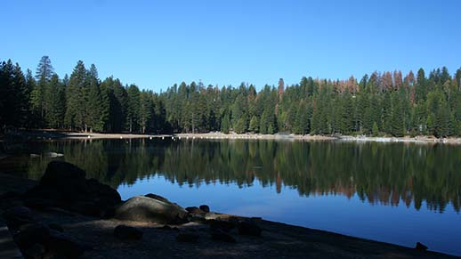 Pinecrest Lake View