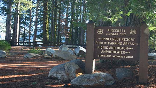 Pinecrest General Sign