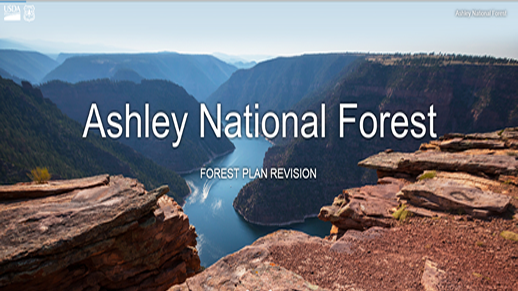 Cover page for the forest plan revision project for the Ashley National Forest