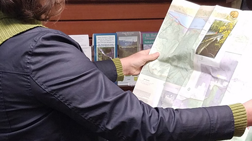 Person checking map