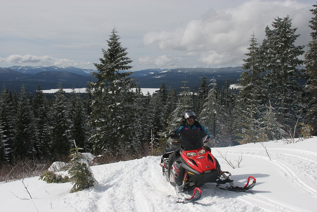 A person riding a snowmobile through a snowy winter landscape