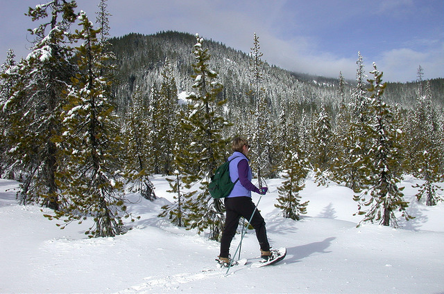 A person snowshoeing through a snowy winter landscape with trees and hills