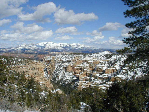 Sandstone Canyons with mountain peaks in background, covered with snow