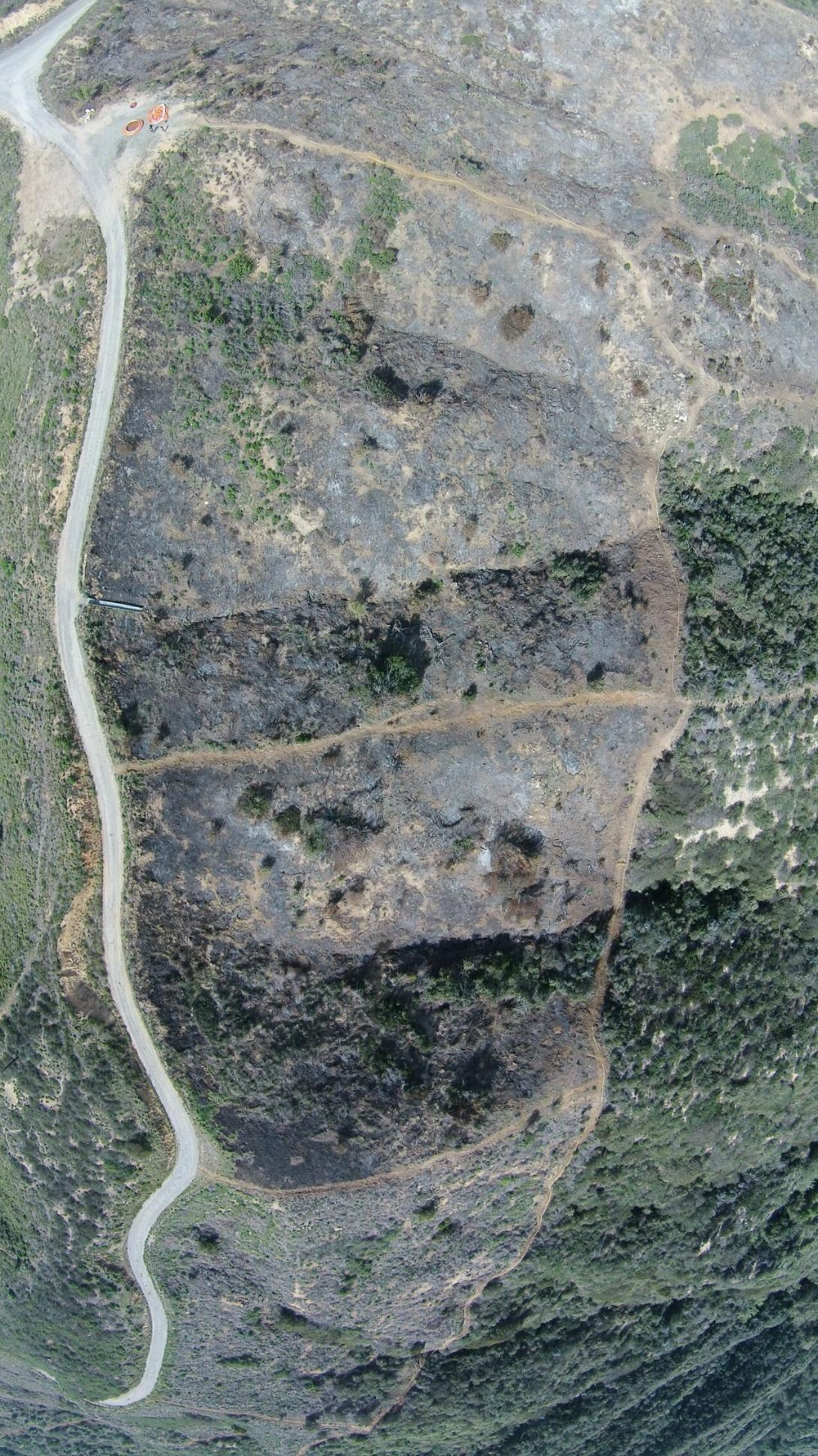 image of overhead look at a burn area