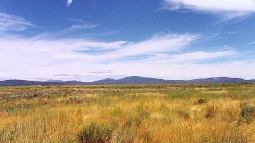 Blue skies over long range grassy landscape with mountains in the background
