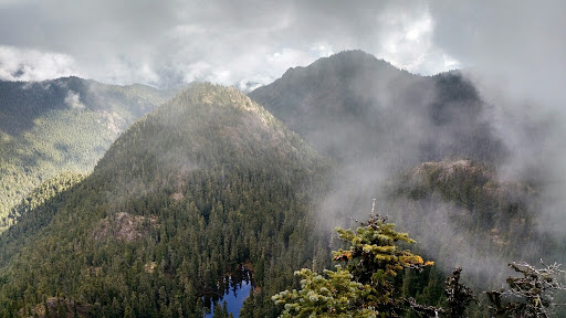 View from hiking the Tunnel Creek Trail via Quilcene, WA by Greg Wahl.