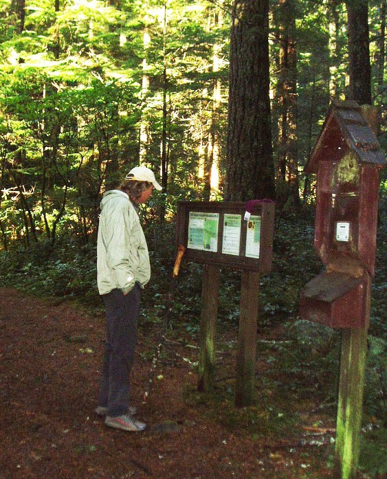 Hiker reads sign at Mt Walker trailhead