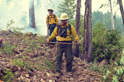 Wildland Firefighters Collier Butte Fire