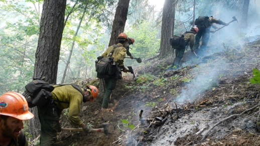 Firefighters work uphill to create a fireline.
