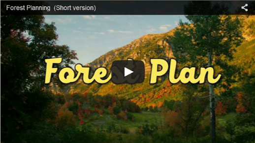 Click on the image to view the Forest Planning video on YouTube