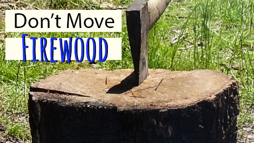 Don't Move Firewood! Help stop the spread of invasive species.