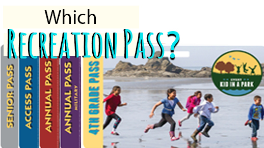 Which Recreation Pass is right for you?