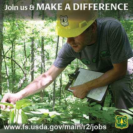Forest Service folks at work
