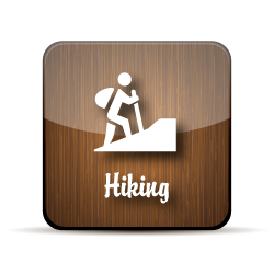 A stick figure with a backpack and walking sticks climbs on incline, on a wood-grain jelly icon.