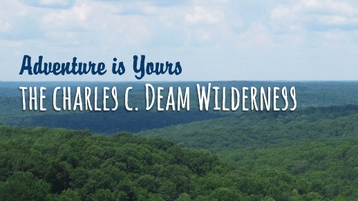 A vista over looks a sea of green trees. Text reads 'Adventure is yours. Charles C Deam Wilderness'