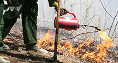 A gloved hand holds a can that is emitting an orange flame. The flames leap across the ground.