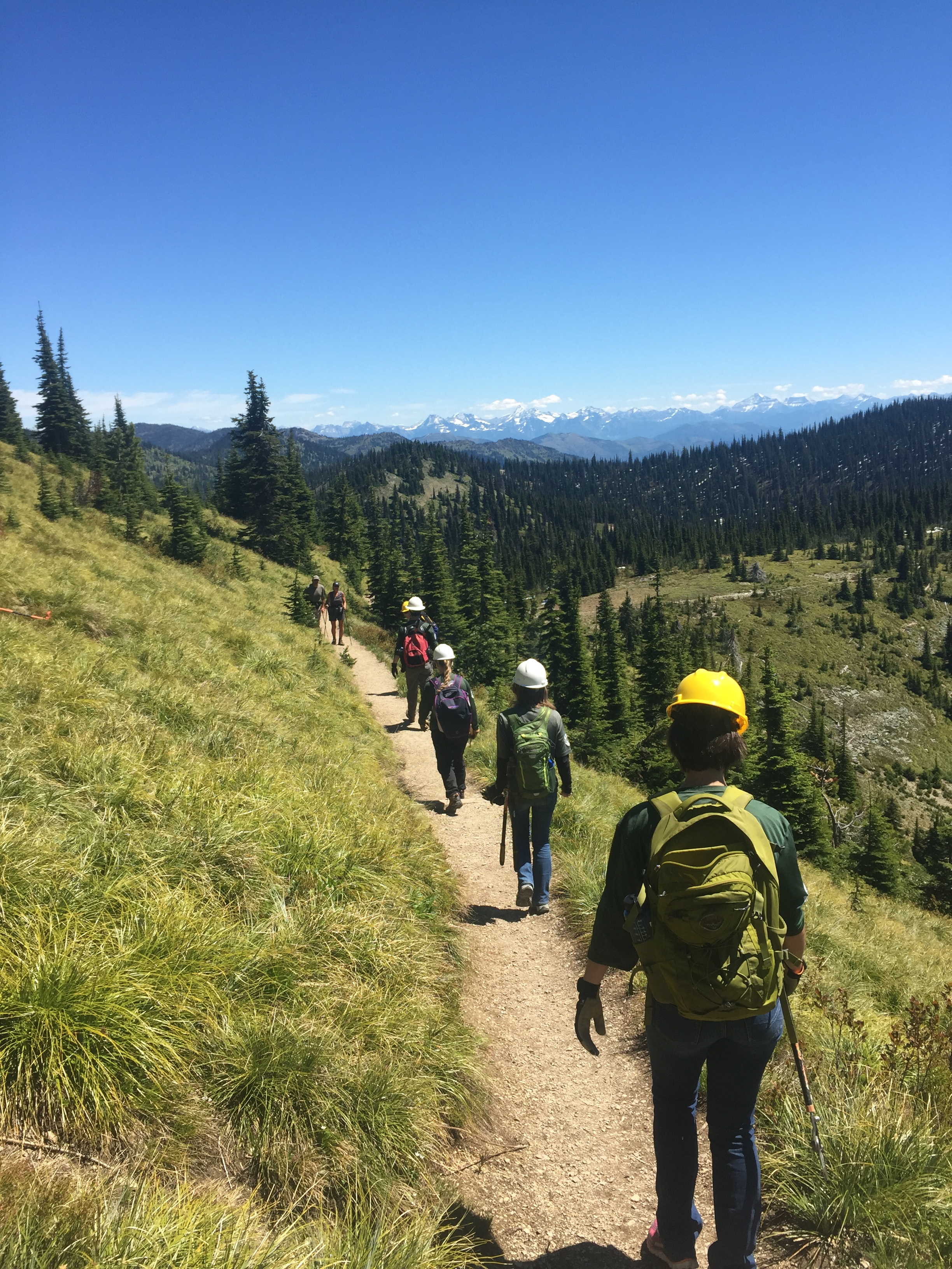 Montana Conservation Corps hiking on a trail.