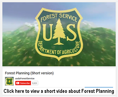 Forest Plan short video