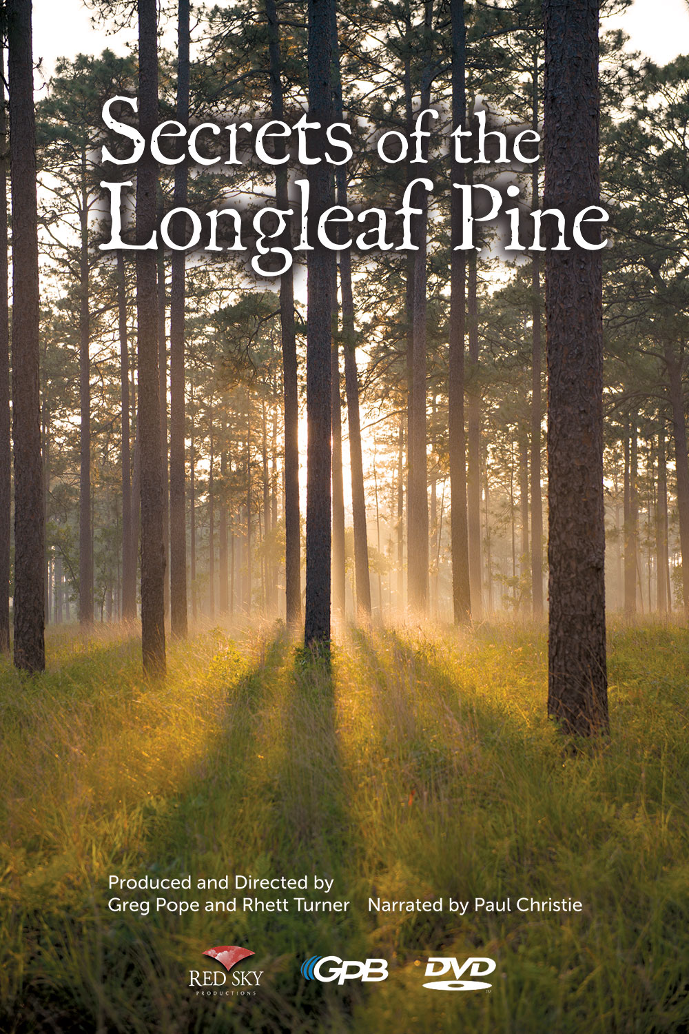 Secrets of the Longleaf Pine photo