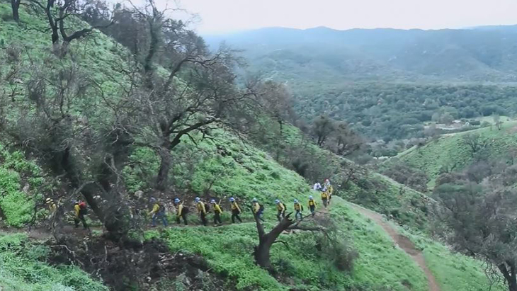 A line of women dressed in forest firefighting gear hikes up a hillside.