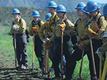 A line of women dressed in firefighting gear stand in a field with shovels and hoes
