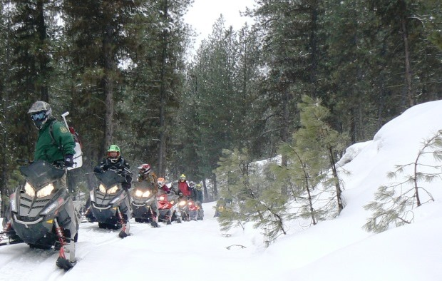 Photo of a line of students riding snowmobiles along a forested snow covered road