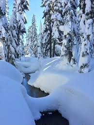 Snowy scene with creek covered by snow