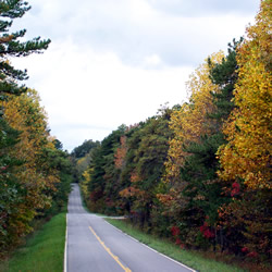 Paved road through the fall colored trees