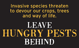 April is invasive plant pest and disease awareness month.