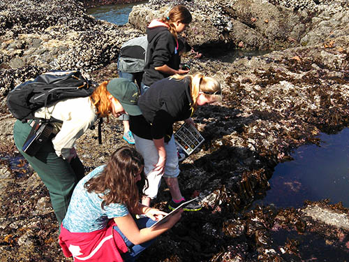 A group of kids explores tidepools with a ranger