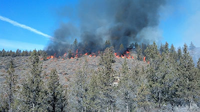 Pile burn on Swanson Canyon WUI Project