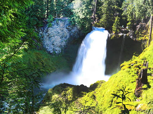 Sahalie Falls tumbles over rocks surrounded by a lush green forest