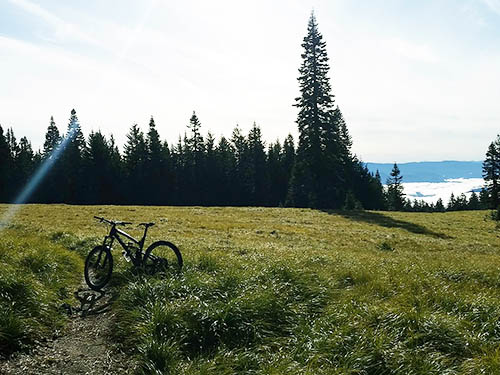 A mountain bike rests on a trail through a meadow with mountains in the background