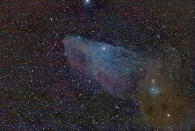 photo of night sky - Blue Horse Head Nebula