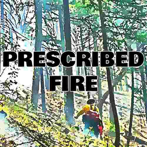 PRESCRIBED FIRE BUTTON