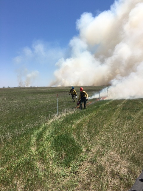 [image] Prescribed Fire Training Exchange in South Dakota