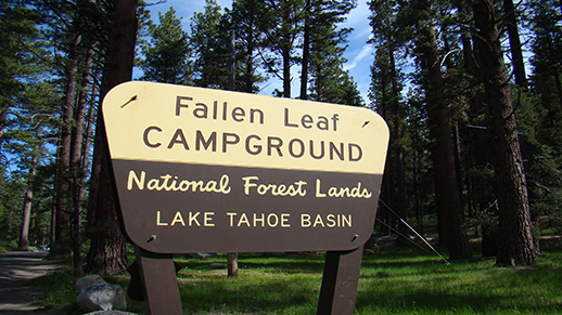 Fallen Leaf Campground sign.