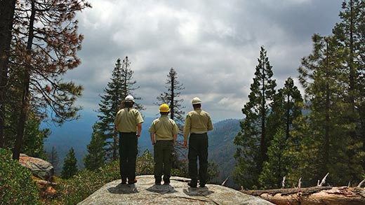 Three individuals wearing hardhats stand on a rock looking out at the forest.