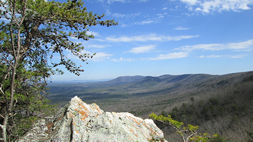 Cheaha Wilderness