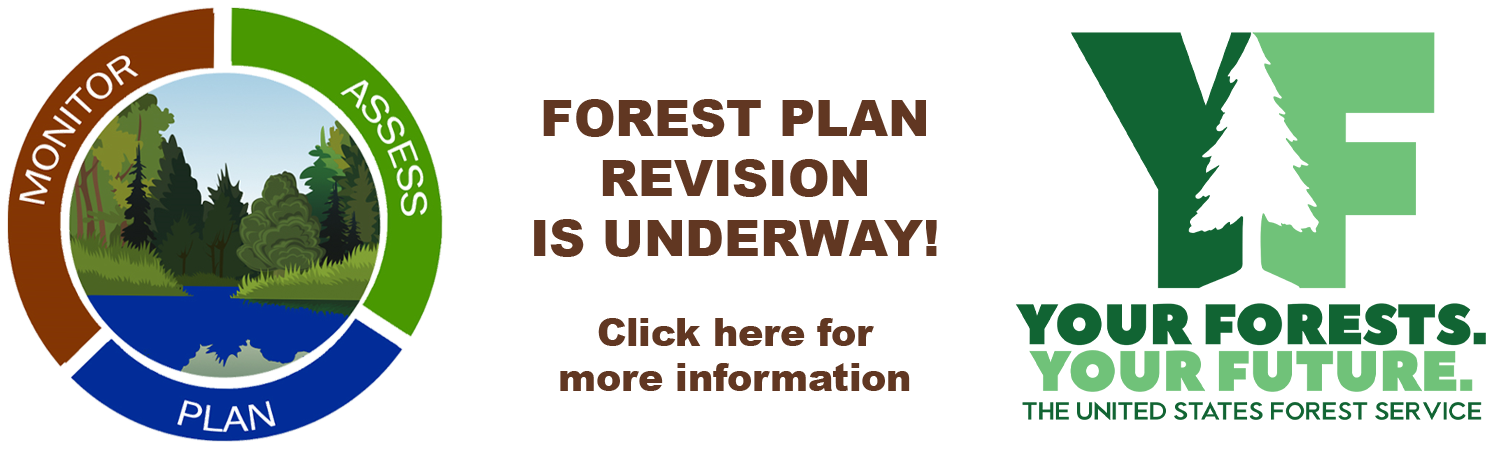 Circular Forest Plan Revision graphic; text prompt to click; Your Forests, Your Future logo.