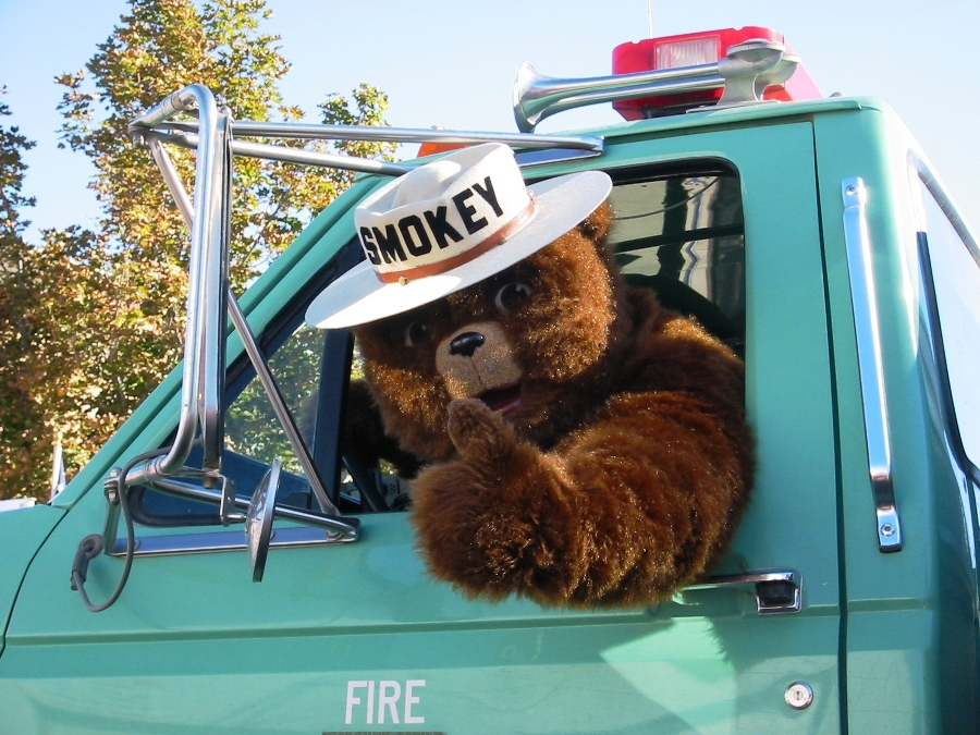 Smokey the bear giving a thumbs up from inside a pickup truck