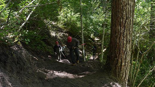 Northwest Youth Corps ASL Trail Crew on Quartz Creek Trail