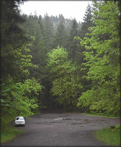 Brice Creek Trailhead